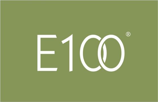E 100 3类