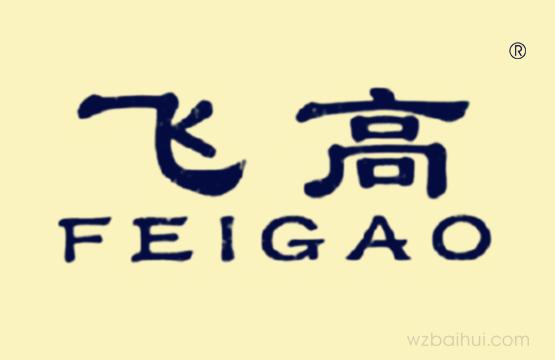 飞高 FEIGAO