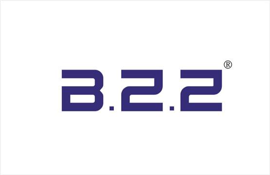 BZZ 9类