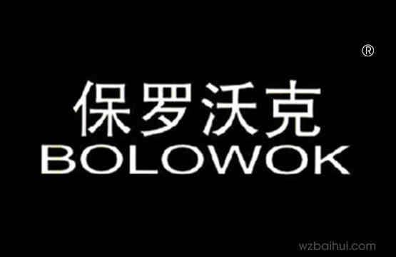 保罗沃克BOLOWOK