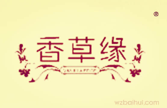 香草缘+VANILLAEDGE