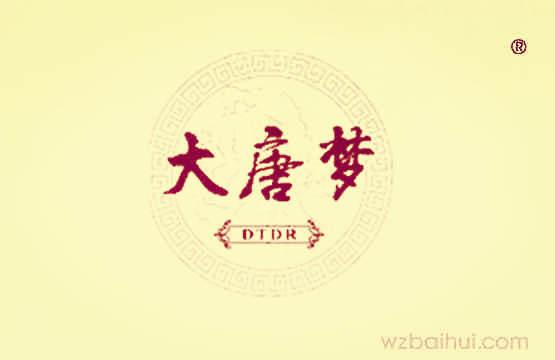 大唐梦+DTDR