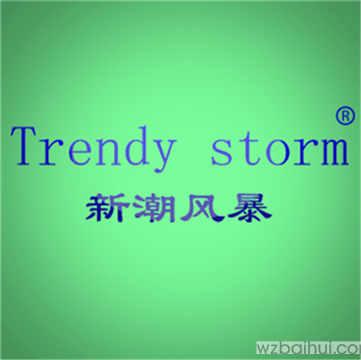 新潮风暴TRENDYSTORM